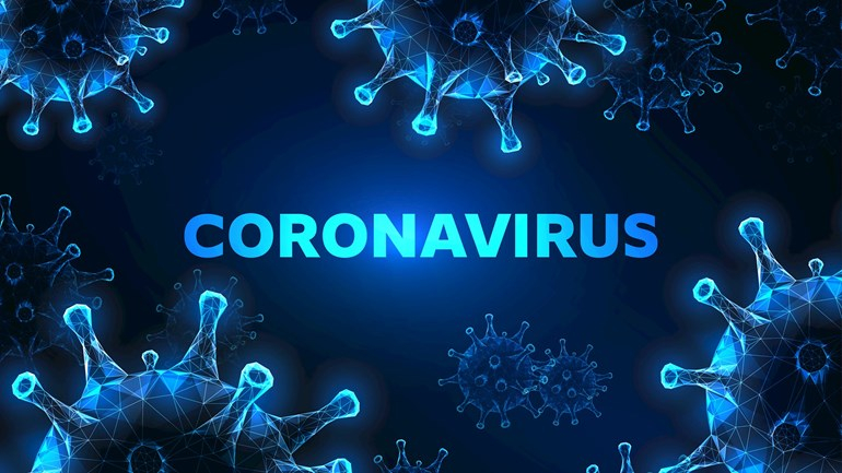 virus_2.jpg